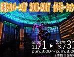 2016-2017イルミネーション ポスター JPEG
